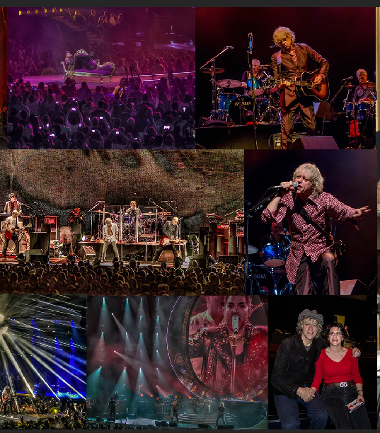 Collage of rock star concert photos