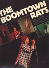Boomtown Rats book