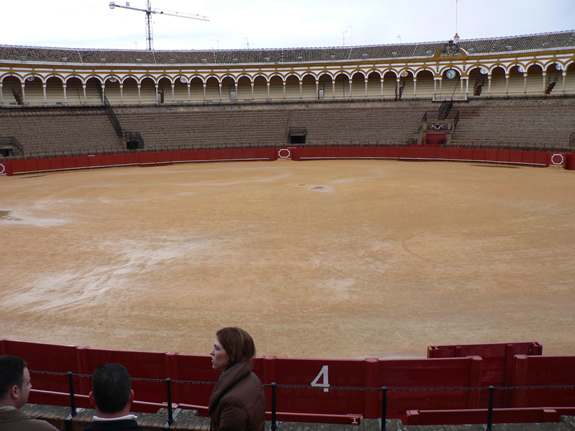 Bull fighting ring and tour guide