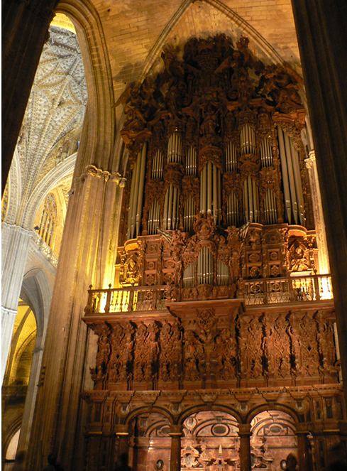 Organ in Cathedral